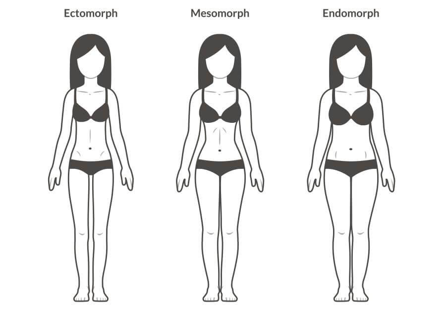 ektomorf mezomorf endomorf ženy
